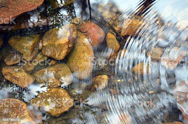 Photo of Ripples and reflections in a pebbly pond