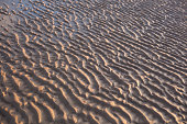 Ripples in the sand during golden hour.
