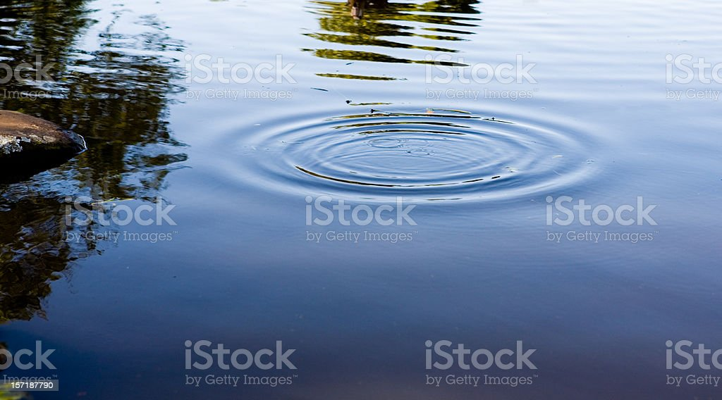 Ripples on a pond stock photo