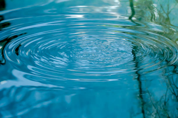 ripples on the water - пруд стоковые фото и изображения