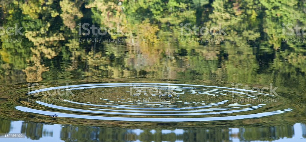 Ripples on the Water royalty-free stock photo
