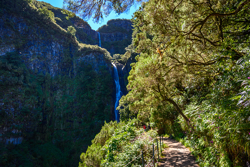 Risco Waterfall - Hiking on Levada trail 25 Fontes in Laurel forest at Rabacal - beautiful landscape scenery - Madeira Island, Portugal