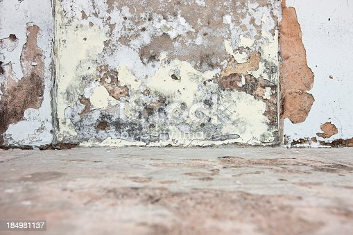 Wall paint pealing at the ground level due to rising dampness