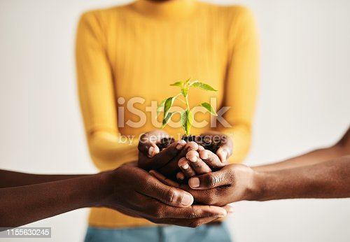 Shot of a group of people holding plants growing out of soil
