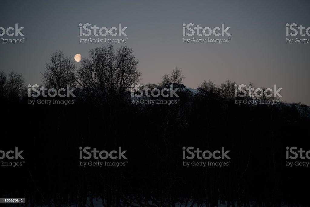 Aufgehenden moon – Foto