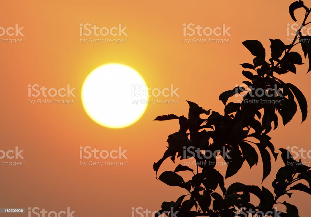 Rising sun royalty-free stock photo