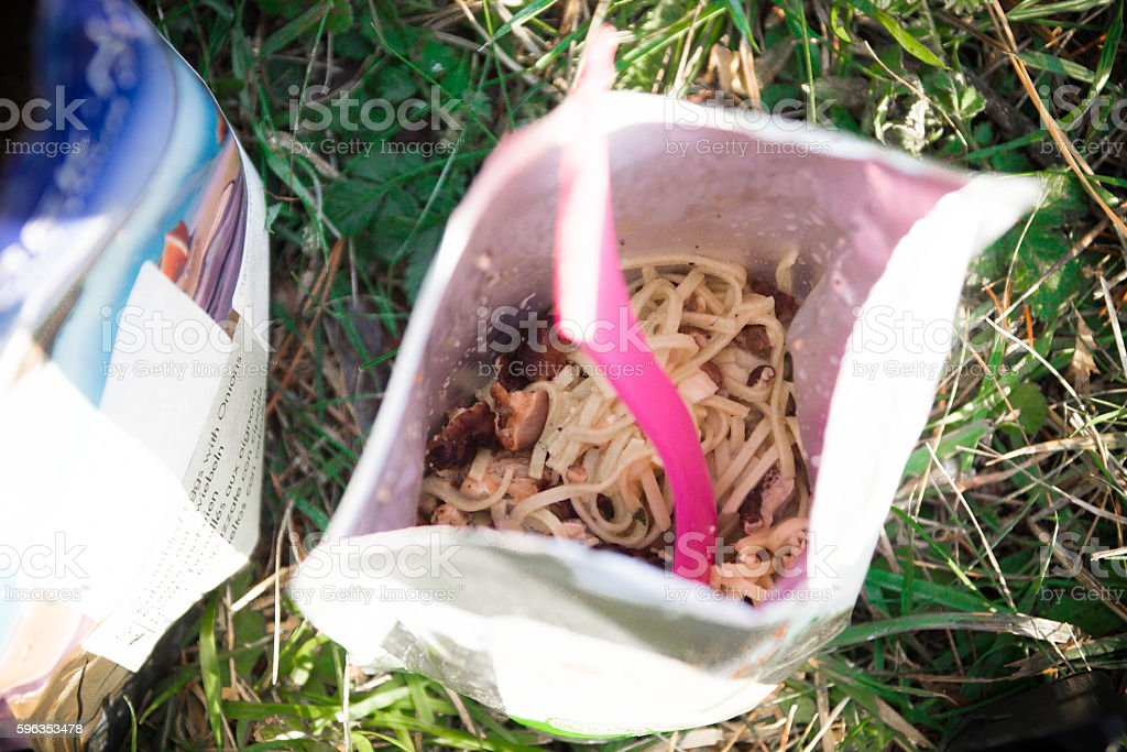 Risotto and spoon. Cooking outdoors. royalty-free stock photo