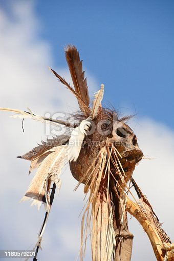 Headhunting: ritual by indigenous culture. Human skull decorated with bird feathers.