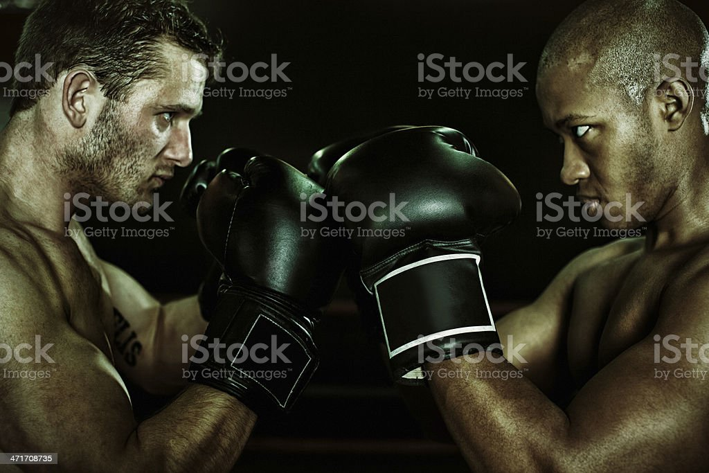 rival boxers faceoff stock photo