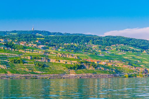 Rivaz and Chexbres villages situated near Geneva lake in Switzerland