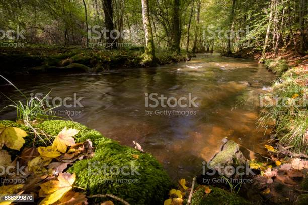 Photo of River Aisne lighted by warm sunlight in the autumn