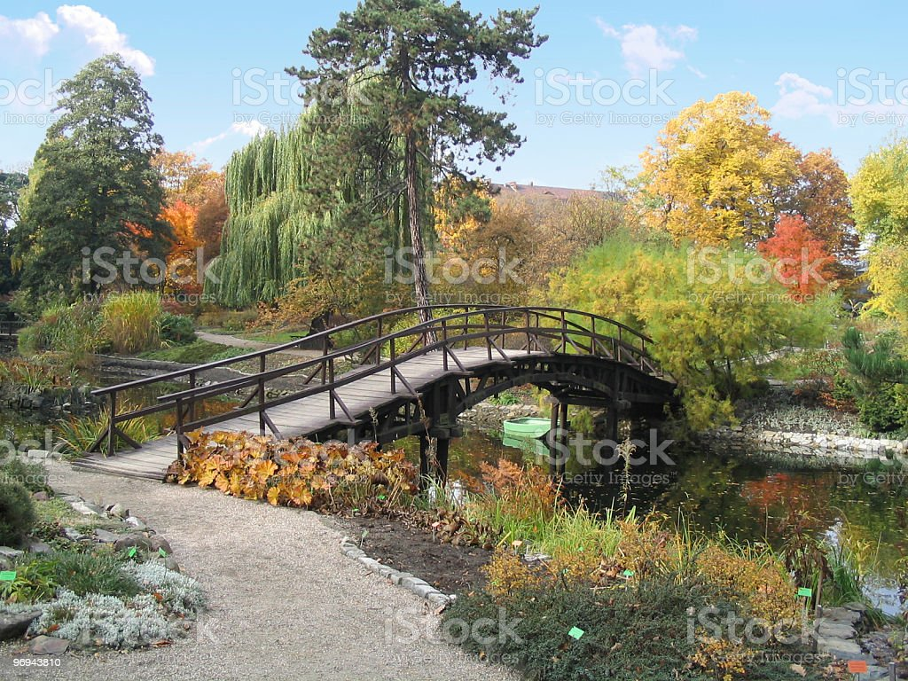 river and bridge in botanical garden in autumn royalty-free stock photo