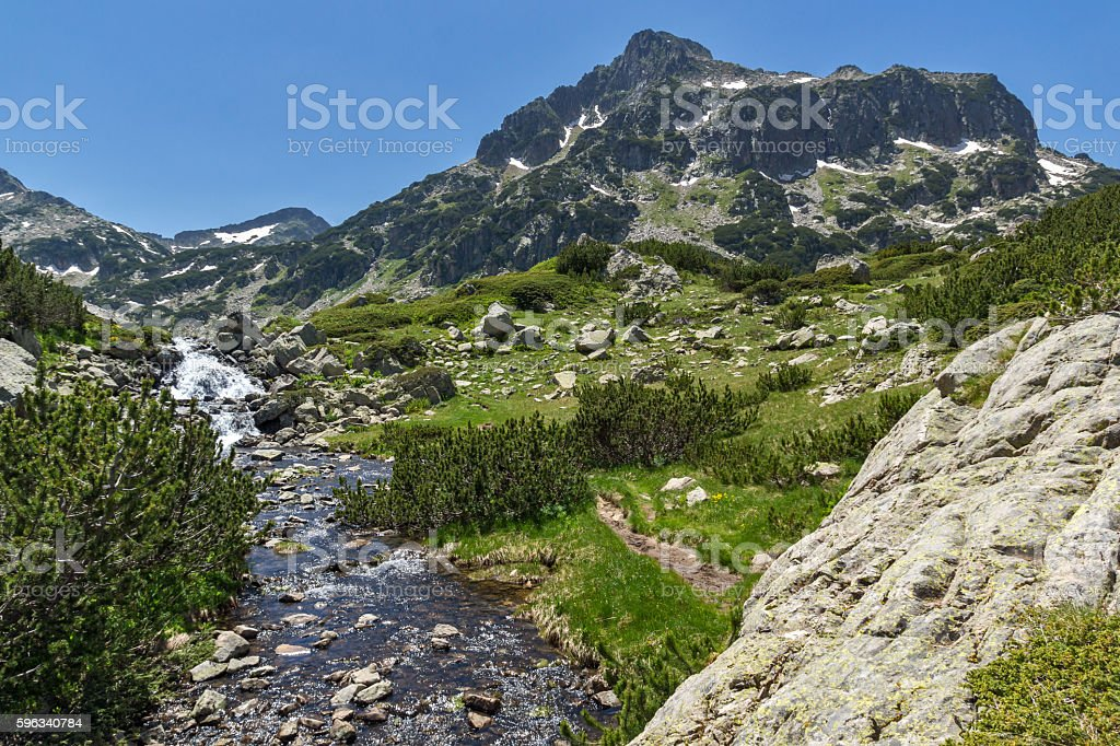 River and Dzhangal peak, Pirin Mountain Lizenzfreies stock-foto