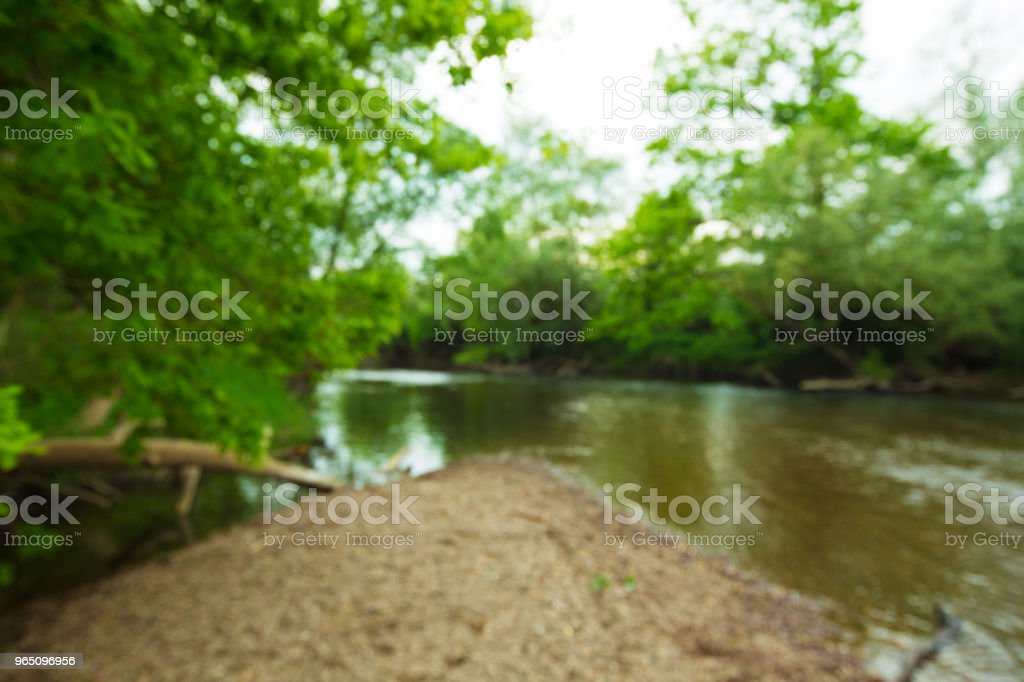 river and forest royalty-free stock photo