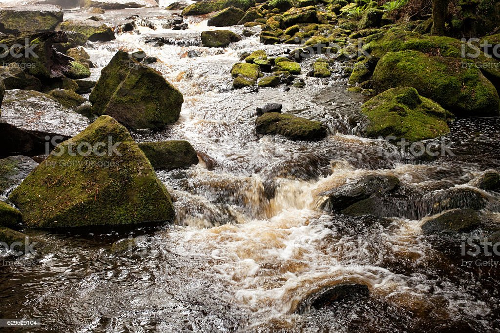 River and mossy rocks stock photo