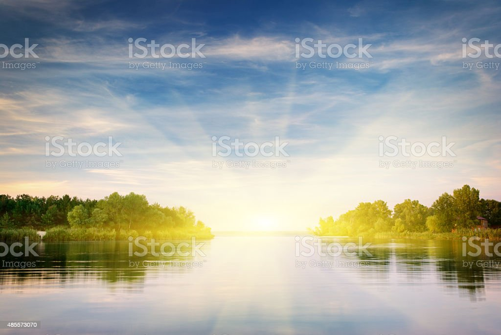 River and spring forest. stock photo