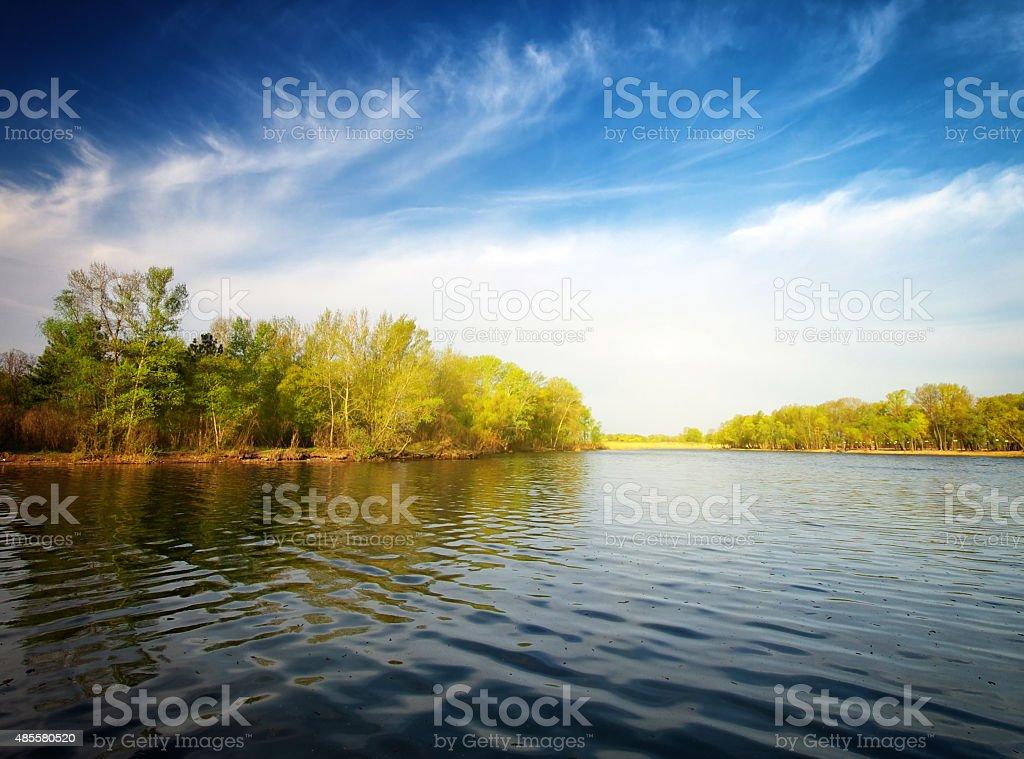 River und den Wald – Foto