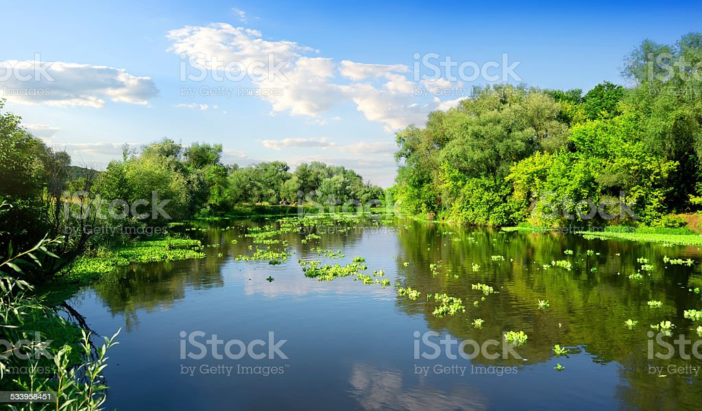 River and summer stock photo