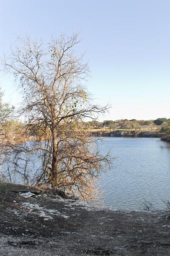 istock River at Brushy Creek Regional Trail 507845206