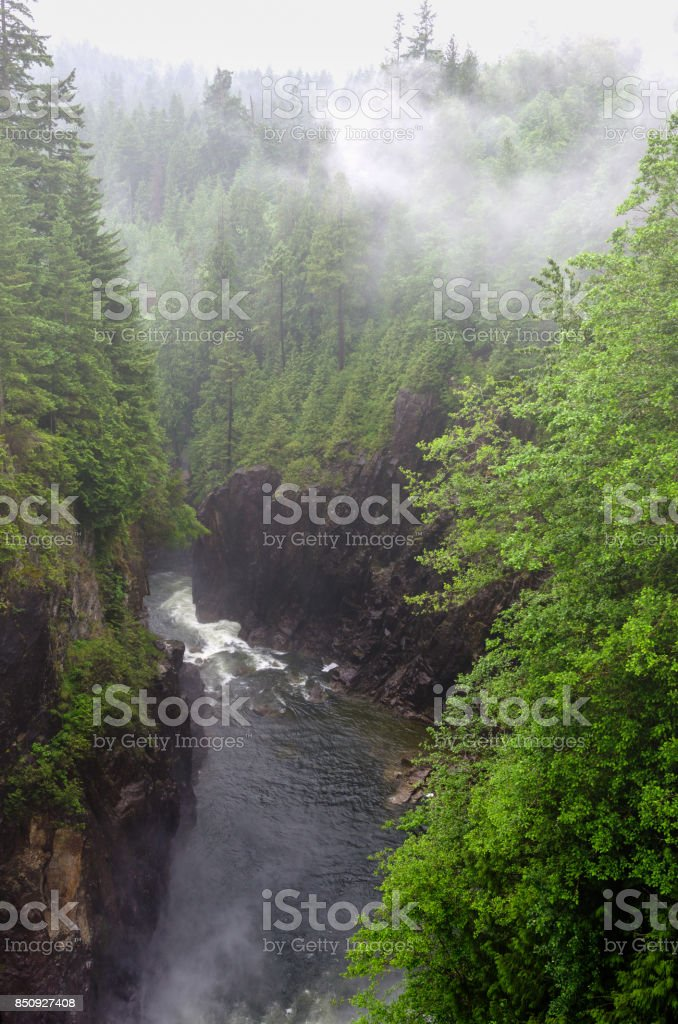 River at the Botton of Deep Gorge stock photo