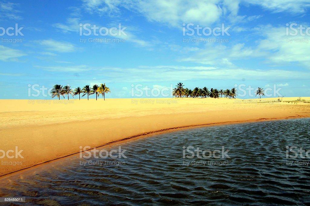 River beach stock photo