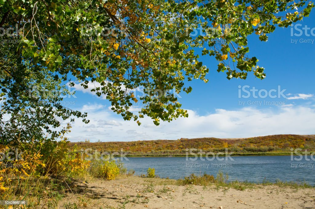River beach with autumn trees and sandy bank stock photo