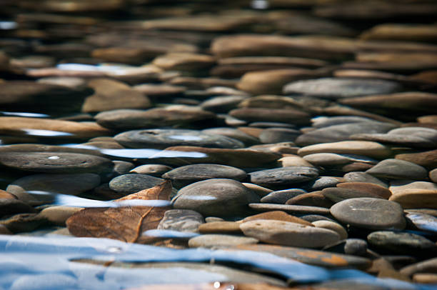 river-bett - bach stock-fotos und bilder