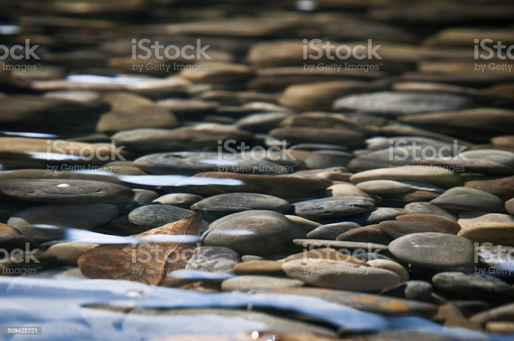 River Bed stock photo