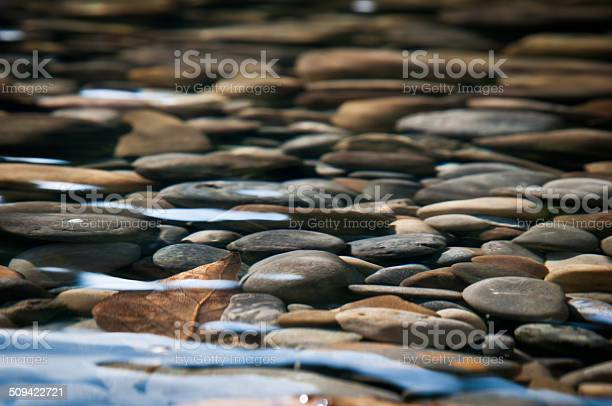 Photo of River Bed