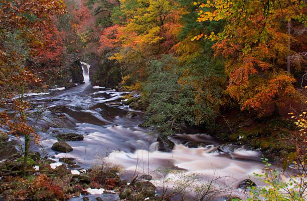 River Braan Autumn. stock photo
