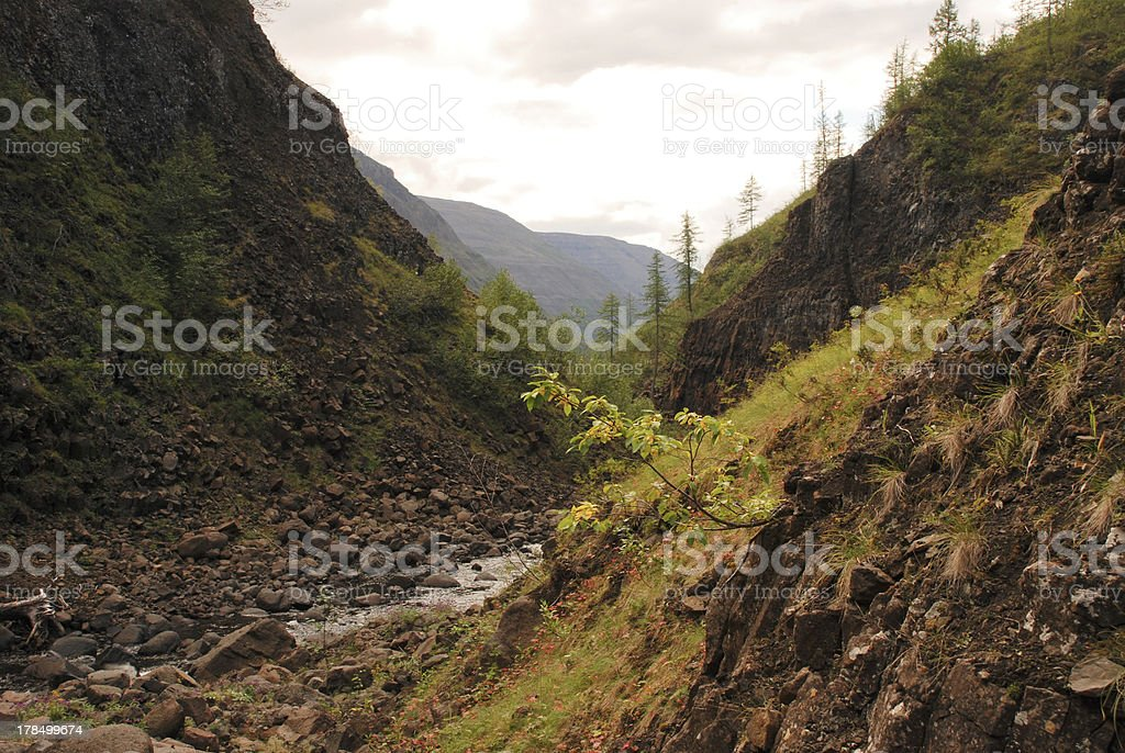 River Bucharama. royalty-free stock photo