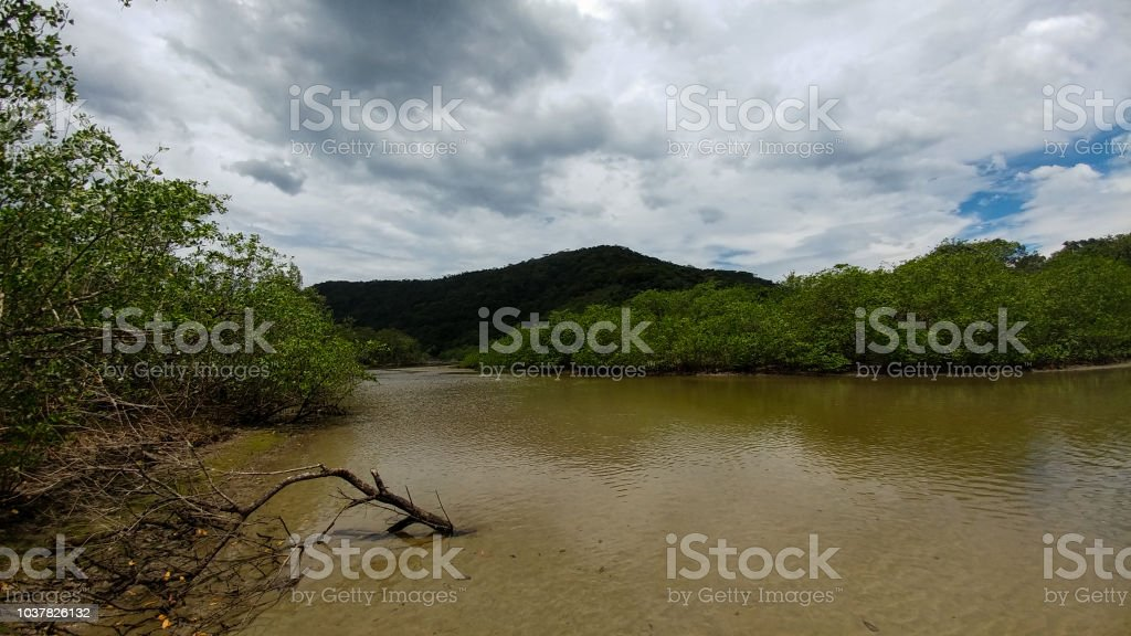 River, cloudy sky and mangrove - Rio, nublado e pântano stock photo