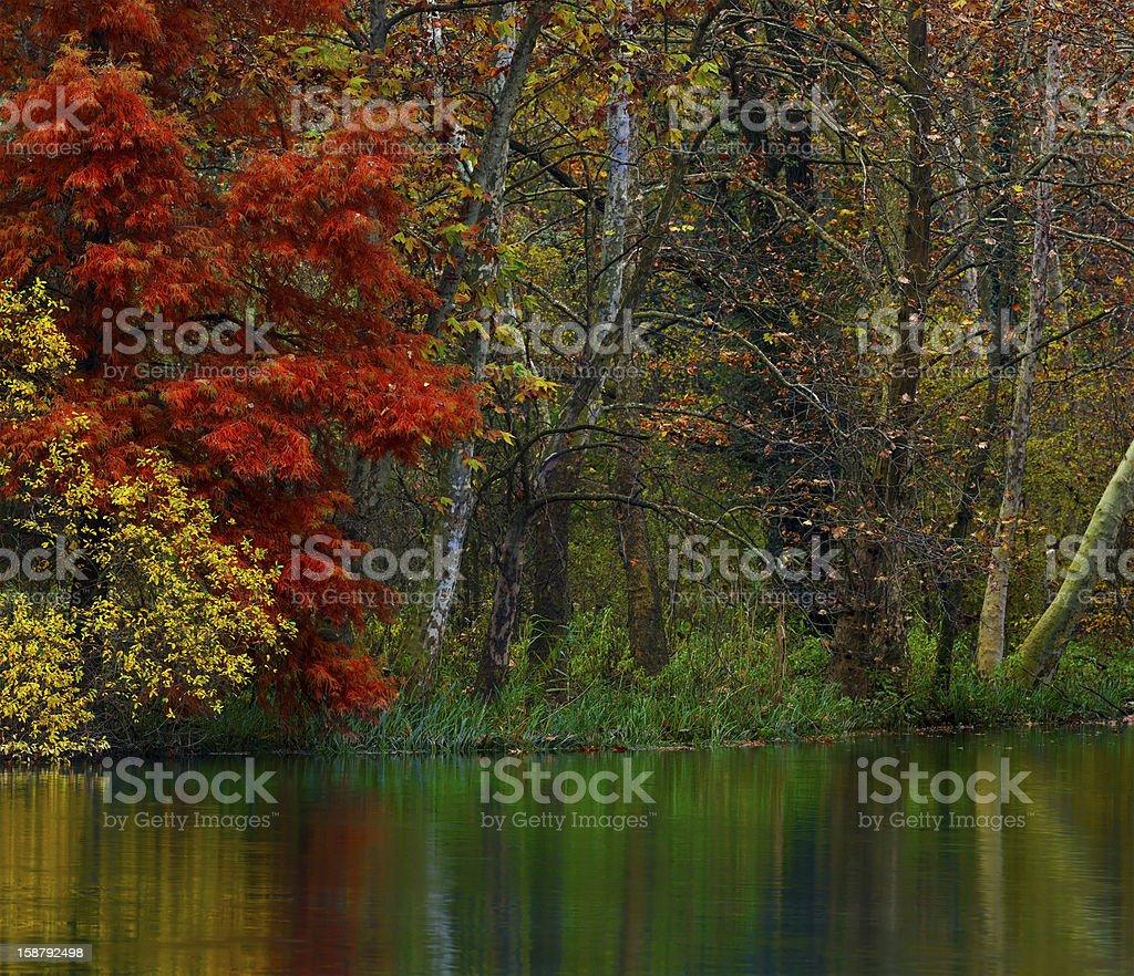 River Corner in Autumn royalty-free stock photo