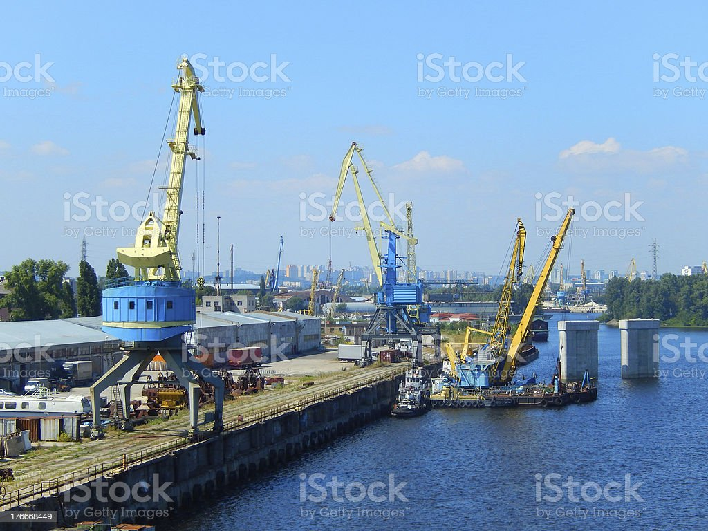River cranes royalty-free stock photo