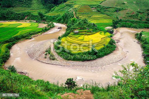 607590542istockphoto River curve irrigation and Rice fields terraced  in vietnam 607590784