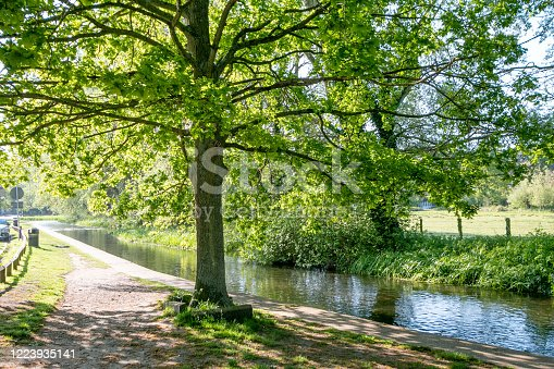 River Darent in Eynsford, England