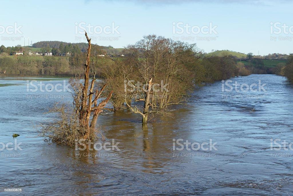 River Dee at Corwen flooding stock photo
