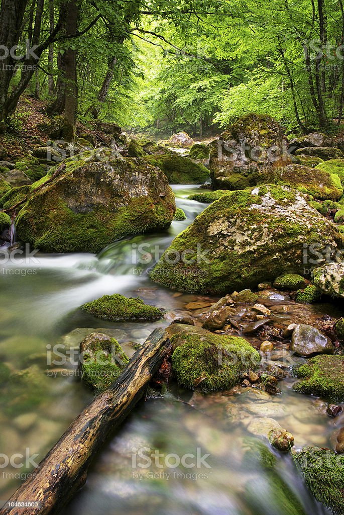 River deep in mountain royalty-free stock photo