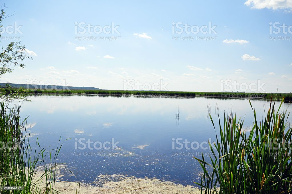 River delta royalty-free stock photo