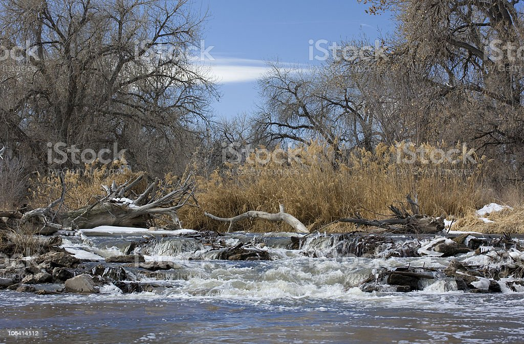 river diversion dam with a log jam stock photo