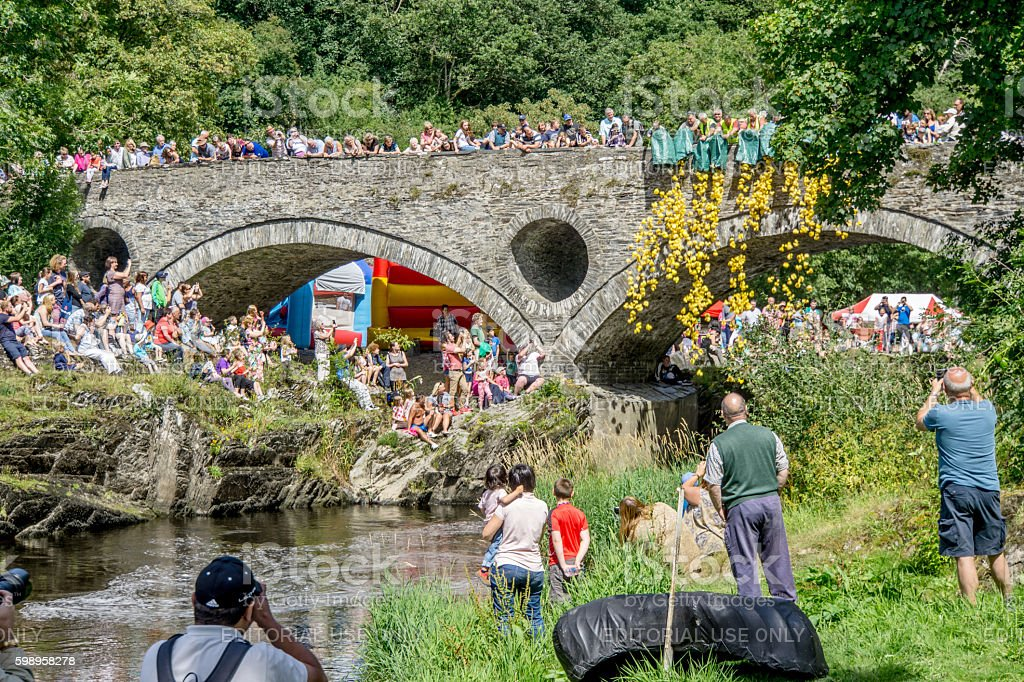 River duck race with crowds cheering them on stock photo