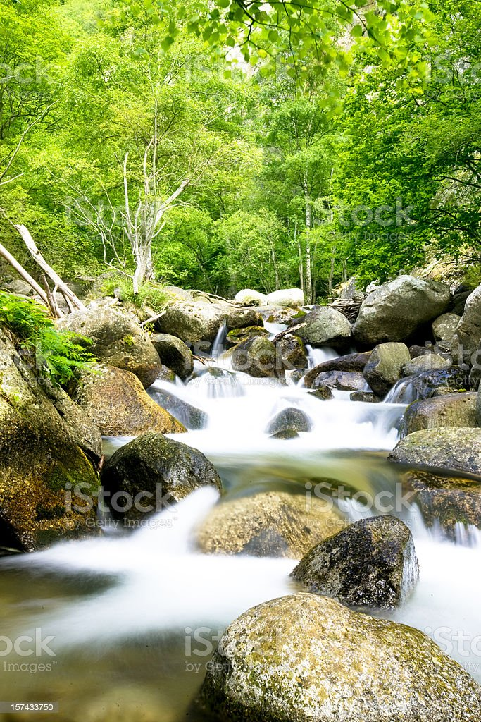River flow royalty-free stock photo