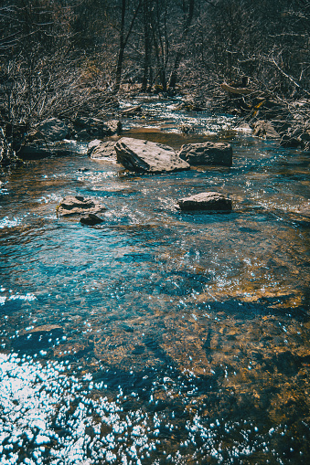 A river flowing with some big stones in it sorrounded by bare trees
