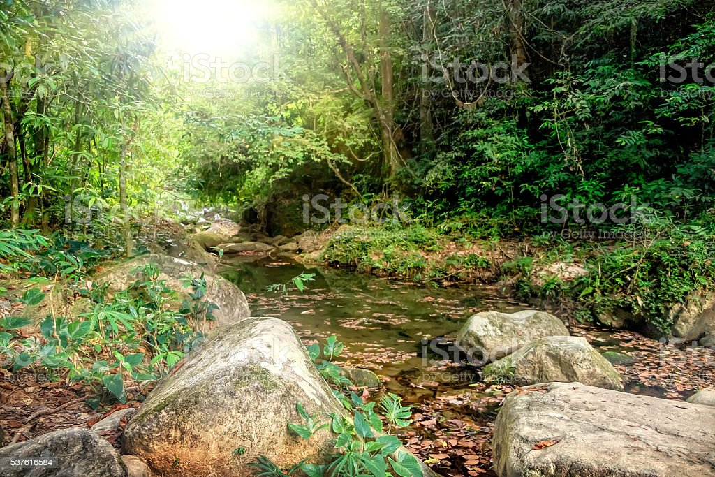 River flowing through rocks and a large stone stock photo