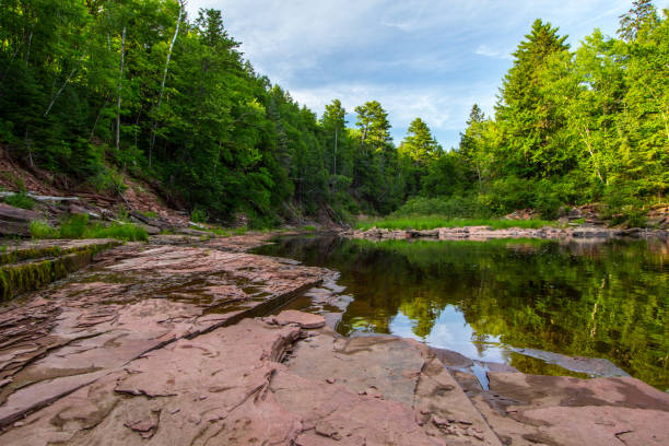 River Flows Through The Wilderness Of Northern Michigan stock photo