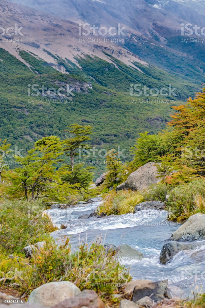 River Forest and Mountains Andes Scene, Patagonia, Argentina foto de stock royalty-free