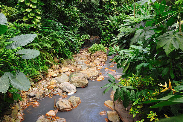 River from Diamond falls, St Lucia stock photo