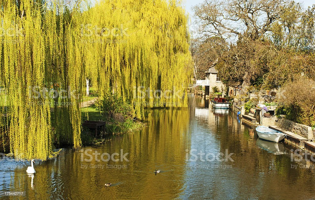 River Great Ouse at Godmanchester stock photo