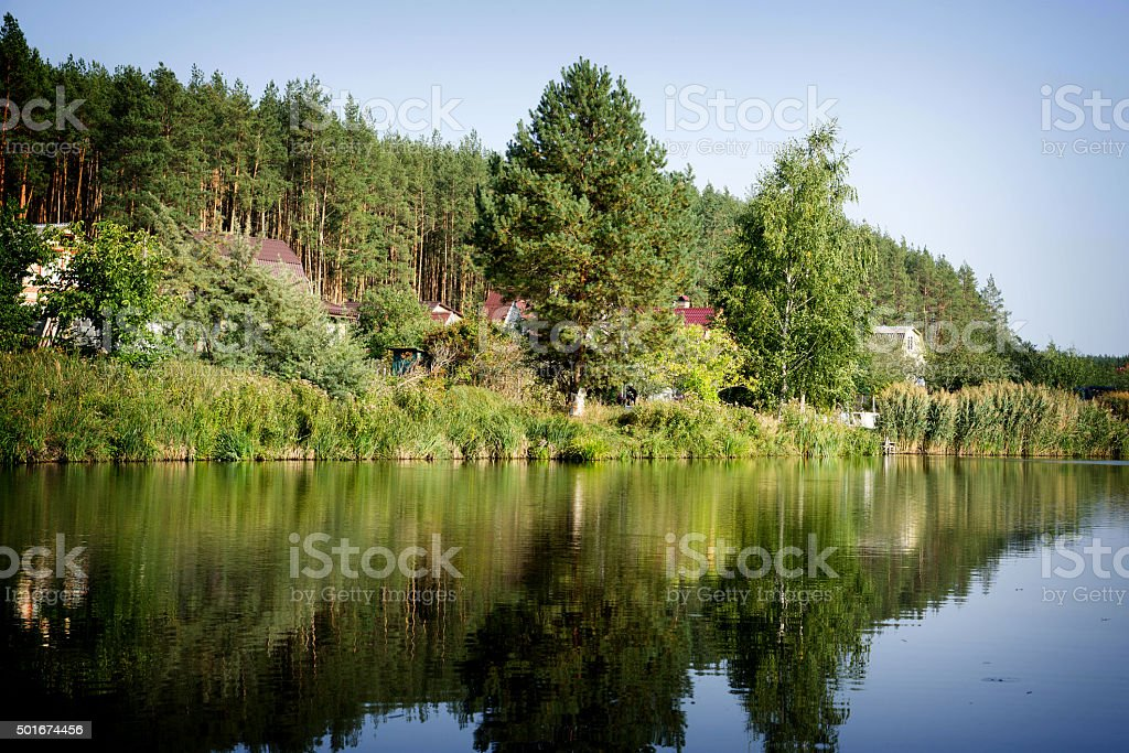 River house with reflections and blue sky near the forest stock photo