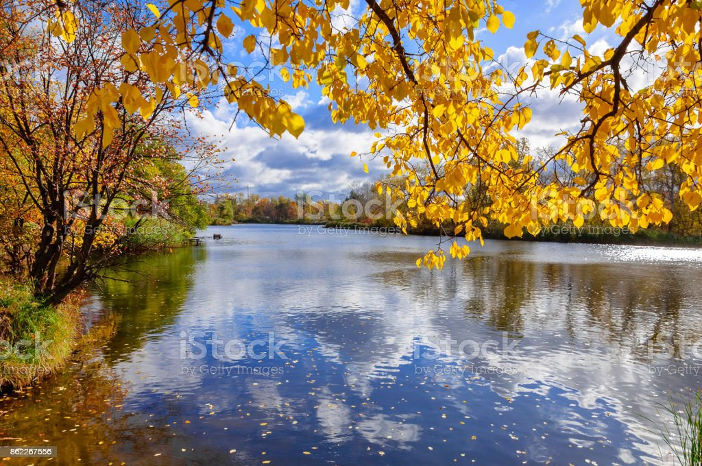 River in a delightful autumn forest at sunny day stock photo